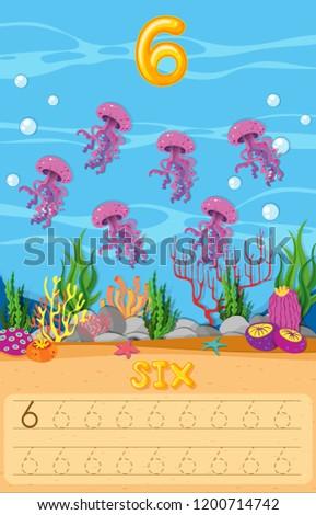 six jellyfish underwater
