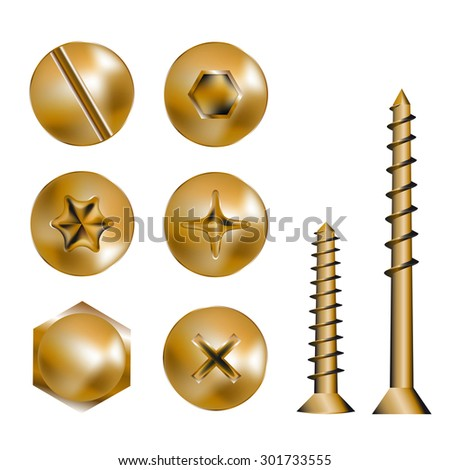 Six Screws and heads, vector illustration