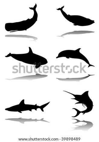 Six silhouettes with reflex of marine animals: sperm whale, blue whale, orca, dolphin, shark, marlin