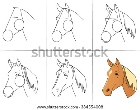 six steps of drawing a horse
