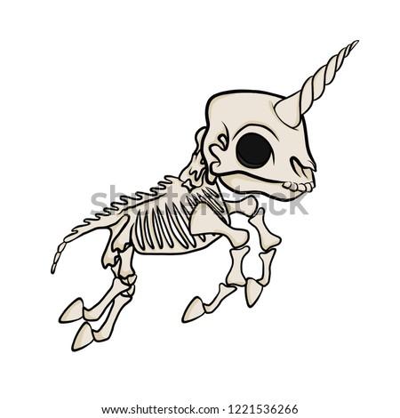 skeleton unicorn isolated vector