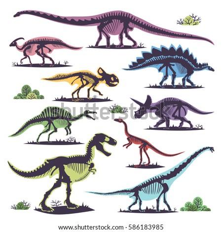 skeletons of dinosaurs