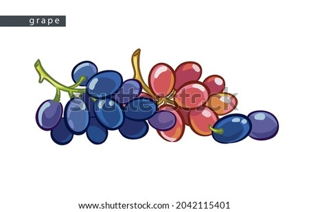 sketch blue and pink grapes