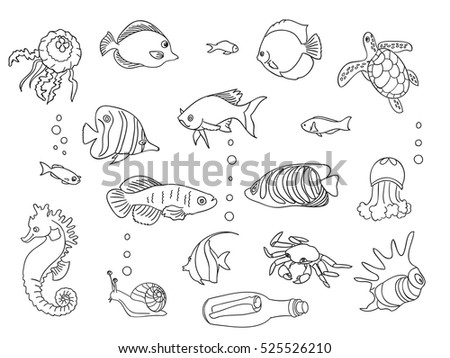sketch collection of marine