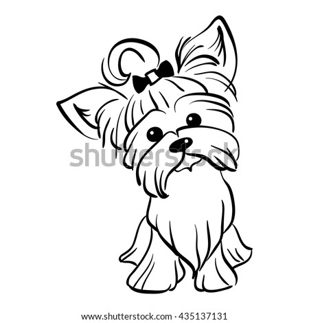 sketch funny dog yorkshire