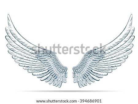 sketch illustration of wings on