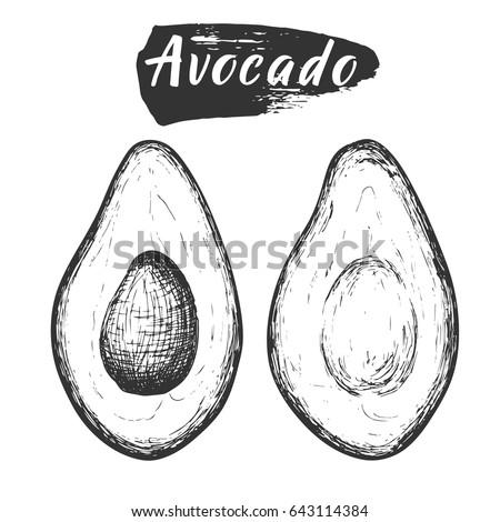 sketch ink vintage avocado cut...
