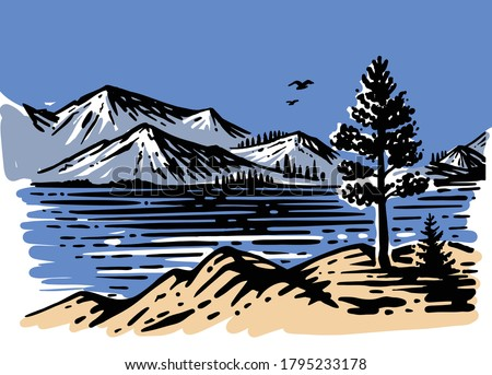 sketch landscape a pine tree