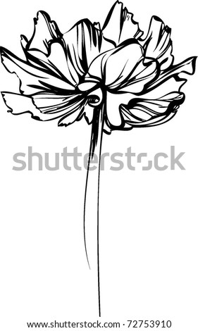 sketch of a flower with large