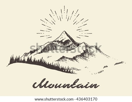 sketch of a mountains with fir