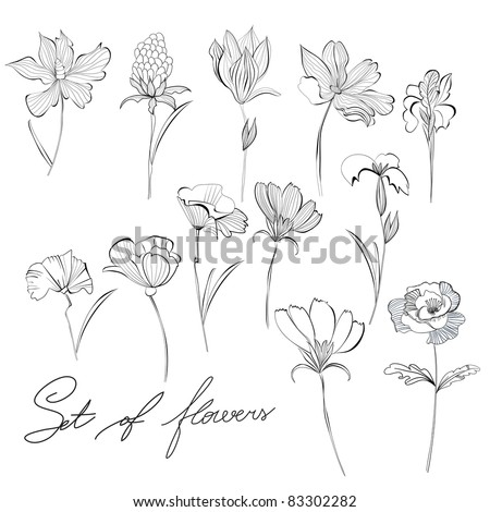 Sketch of flowers - stock vector