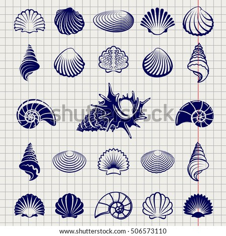 Sketch of sea shells vector illustration. Sea shell silhouettes set on notebook page