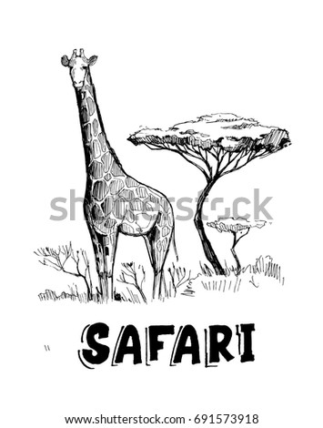 sketch of the african savanna