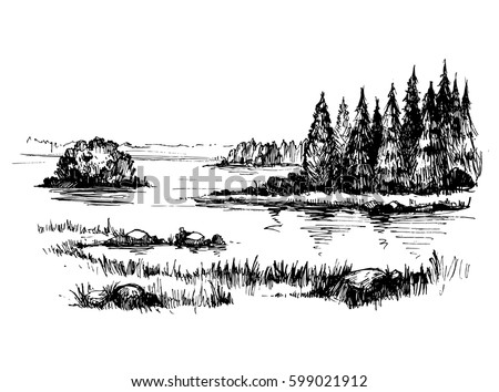 sketch of wild nature with lake