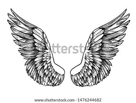 Sketch of wings. Hand drawn illustration converted to vector