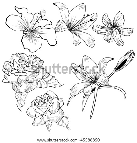 Sketch with flowers - stock vector