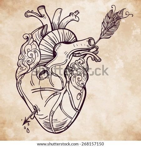 Sketched hand drawn line art beautiful human heart with arrow El Corazon Vintage style Beautiful tattoo template.Isolated vector illustration Tattoo artist design element Old paper background