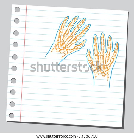 Sketchy illustration of a hands anatomy