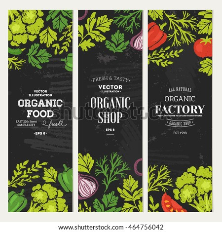 Sketchy vegetables banner collection. Chalkboard style illustration. Vector illustration