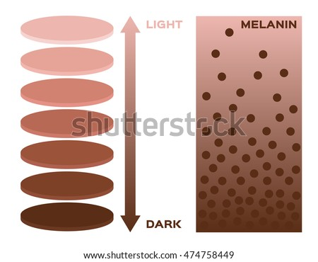 skin color and melanin  index