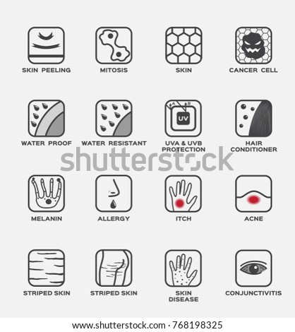 skin icon and vector set