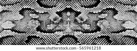 skin snake anaconda texture