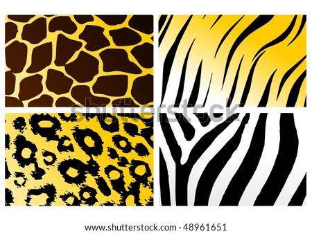 stock-vector-skins-of-various-animals-48961651.jpg