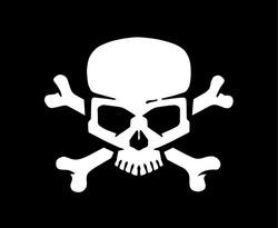 Skull and bones. Jolly roger pirate vector flag.