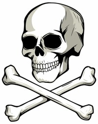 Skull and crossed bones, vector image.