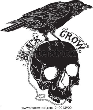 skull and crows sketches