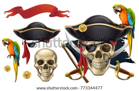 skull and parrot pirate emblem