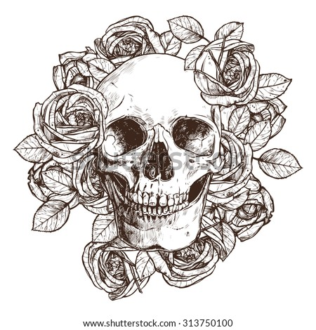 skull and roses hand drawn