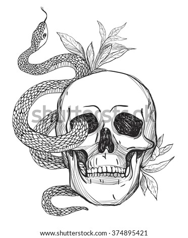 skull and snake tattoo art