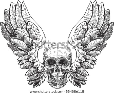skull and wings can use like