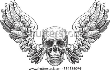 skull and wings in engraving