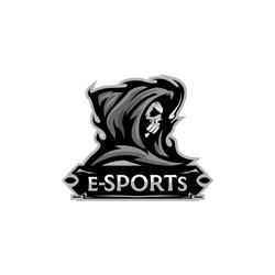 Skull Blind Angel of Death Reaper Esport Logo Team Template Vector
