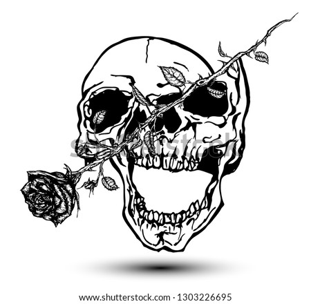 skull cut in two by a rose
