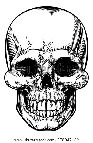 skull drawing in a vintage