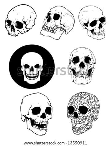 skull group