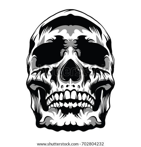 skull head vector illustration