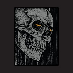 Skull horror graphic illustration vector art t-shirt design