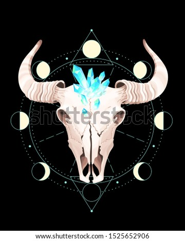 Skull of a bull is put into geometrical figures