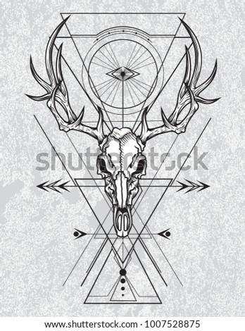 skull of the deer in ink...