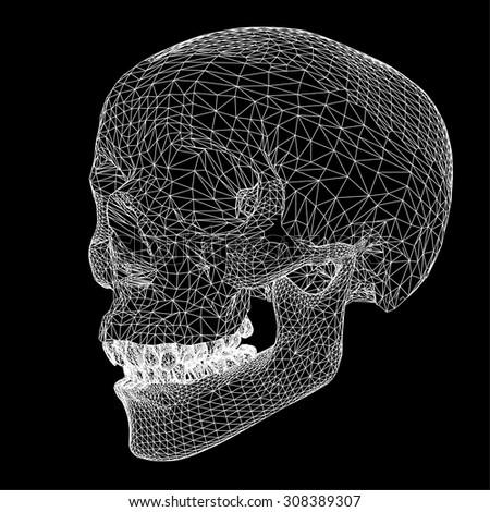skull polygon