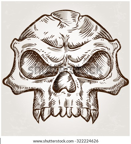 skull sketch design on