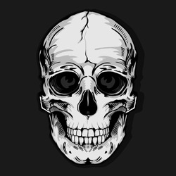 skull typography, tee shirt graphics, vectors