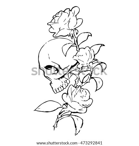 skull with roses on a white