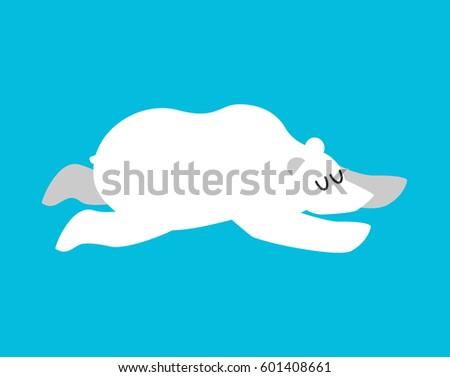 sleeping polar bear arctic and