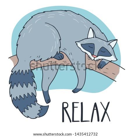 sleeping raccoon hand drawn