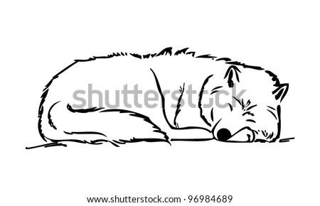 Sleeping wolf - vector illustration